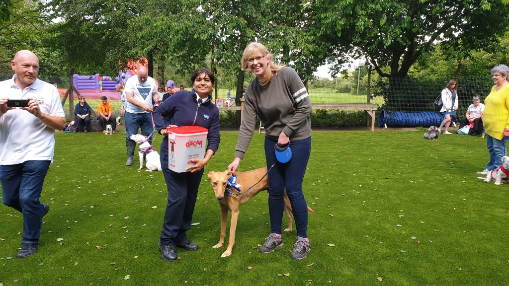 Susie O Neill Author At Hillfield Animal Home